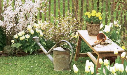 ??  ?? Spring is the time to reacquaint yourself with your garden, and enjoy the bulbs you planted in the autumn