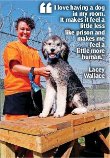 ??  ?? Lacey Wallace works with McAlister at the opening of a new dog training facility. The building and grounds allow inmates to train dogs that may be owned but unruly or are homeless and in need of socialization.