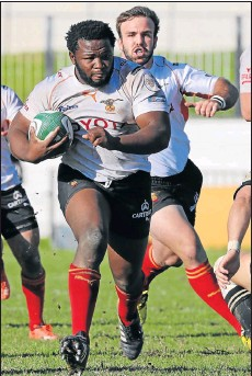 ?? Picture: BACKPAGEPIX ?? STEADFAST: Cheetahs loose head prop Ox Nche is in line for a Springbok call-up for the endof-year tour to Britain.