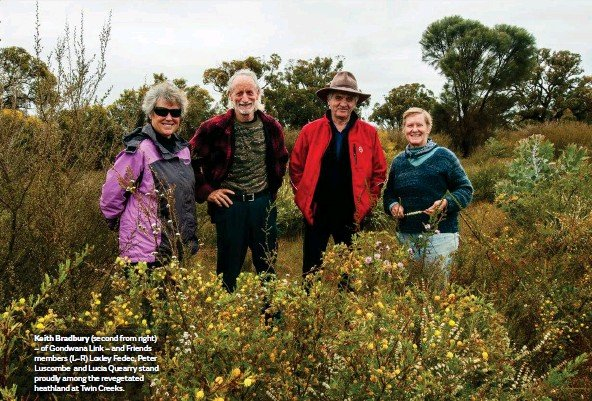 ??  ?? Keith Bradbury ( (secondsecond from right) – of Gondwana Link – and Friends members (L–R)( L–R) Loxley Fedec, Peter Luscombe and Lucia Quearry stand proudly among the revegetated heathland at Twin Creeks.