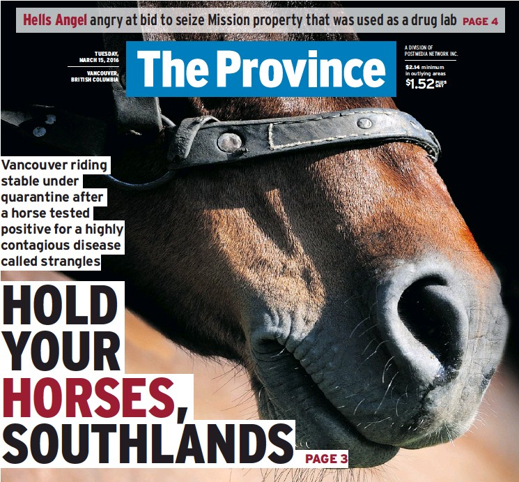 PressReader - The Province: 2016-03-15 - HOLD YOUR HORSES