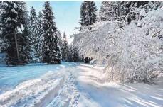 ?? FOTO: LISA KLEBAUM ?? Bei einer Schneewanderung lässt sich die Sonne gut genießen.