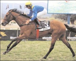 ??  ?? BROADWAY TRIP, with Randall Simons up, wins the BSA August Million Colts & Geldings at Scottsville yesterday. Picture: Candiese Marnewick