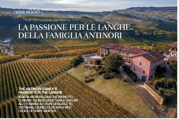 ??  ?? THE ANTINORI FAMILY'S PASSION FOR THE LANGHE ALBIERA ANTINORI LEADS THE PRUNOTTO COMPANY, FOUNDED MORE THAN A CENTURY AGO, TOWARDS A FUTURE DEDICATED TO SUSTAINABLE AGRICULTURE AND A WIDE CHOICE OF GRAPE VARIETIES