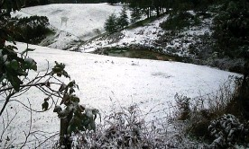 ?? Photograph: Chris Sandiford/AAP ?? File photo of snow in Victoria. The Bureau of Meteorology expects the cold front will move east bringing rain, strong winds and even hail.