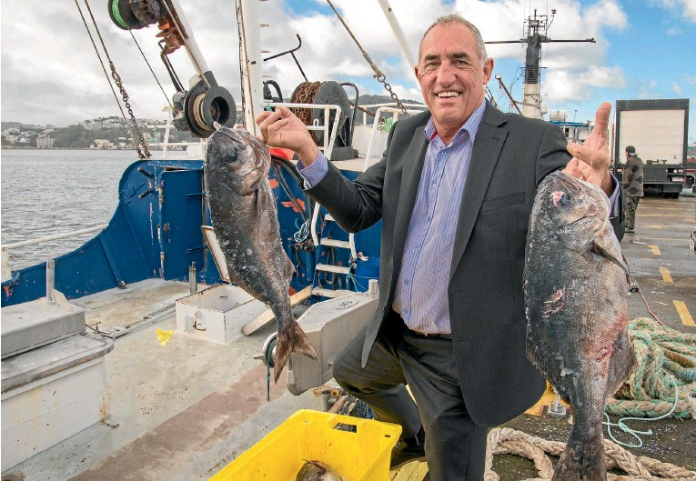 ??  ?? Fish sustainability specialist Tony Craig with some bluenose from the trawlers at the Wellington wharves. Photos: JOHN NICHOLSON/FAIRFAX NZ