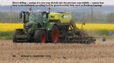 ??  ?? Direct drilling – sowing of a new crop directly into the previous crop stubble – causes less harm to invertebrates, providing food for ground-nesting birds such as Northern Lapwing.