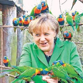 ??  ?? Меркель обещает, что оставит политику и уйдёт на заслуженный отдых. Будет получать пенсию в 16,5 тыс. евро и разводить попугаев.