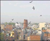 ?? HT ARCHIVE ?? Delhi tales: A view of the Hastsal Minar at Uttam Nagar in the Capital.