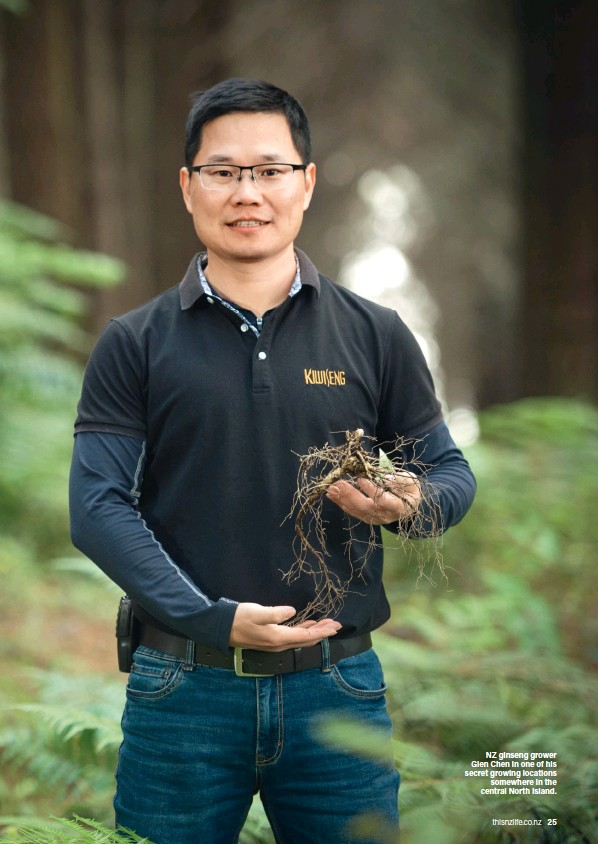 ??  ?? NZ ginseng grower Glen Chen in one of his secret growing locations somewhere in the central North Island.