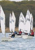 ??  ?? The Optimist open is under way at Chichester Yacht Club