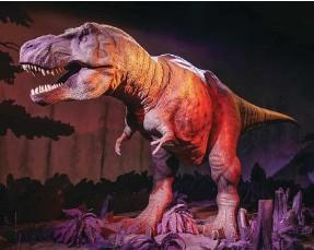 ?? צילום: ?? סודות הדינוזאורים, מדעטק חיפה Mario Ilcampo