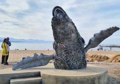 ??  ?? Meet Sindi, Plett's rubbish-gobbling whale sculpture.
