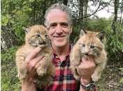 ??  ?? Gordon Buchanan with a pair of baby lynx in Snow Cats & Me on BBC Two on Sunday.