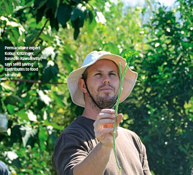 ??  ?? Permaculture expert Kobus Kritzinger, based in Rawsonville, says seed saving contributes to food security.