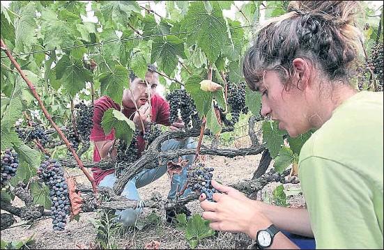 ?? KIM MANRESA ?? Un trabajador y una monitora en la masía de Can Calopa de Dalt, en la montaña de Collserola