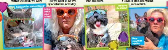 ??  ?? Bagel wears her sunnies with pride I often match mine to hers! She laps up the attention We go everywhere together