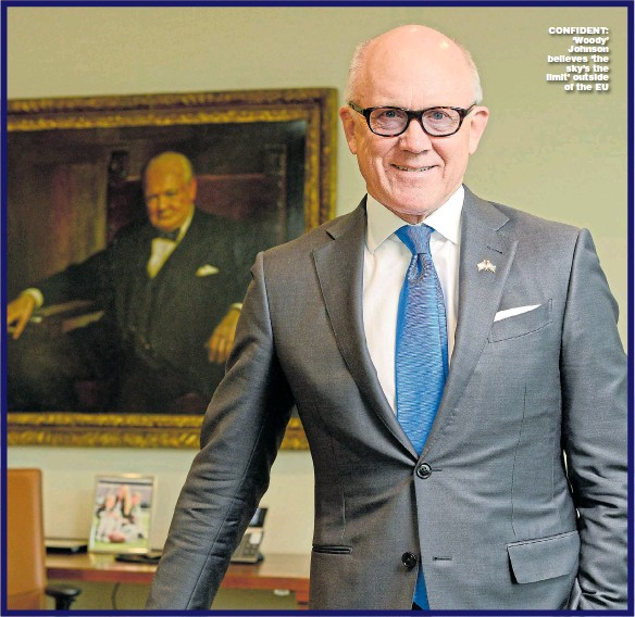 ?? Picture: DANIEL LYNCH ?? CONFIDENT: 'Woody' Johnson believes 'the sky's the limit' outside of the EU