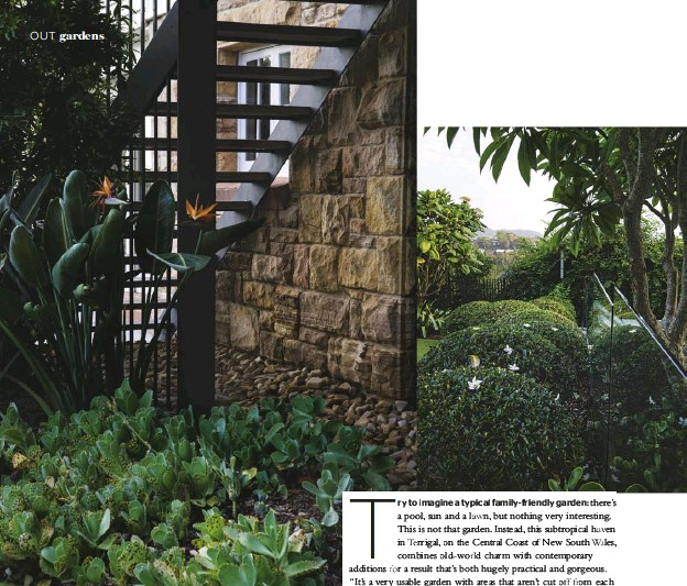 ??  ?? GARDEN BED (above) Below the stairs and railing designed by White + Dickson Architects, vibrant Cotyledon orbiculata and Kalanchoe marmorata are used as groundcover. Bird of paradise ( Strelitzia reginae) stands sentry by the railing. FENCE (above...
