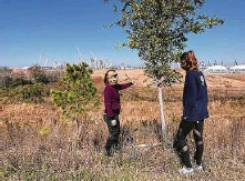 ?? Molly Glentzer / Staff ?? Deborah January-Bevers, Houston Wilderness president and CEO, left, and Bailey Rohde, the organization's associate director of collaborative grant organization projects, check out recently planted trees.