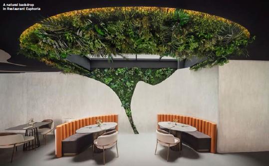 ??  ?? A natural backdrop in Restaurant Euphoria