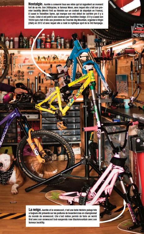 ??  ?? Nostalgie. Aurélie a conservé tous ses vélos qui lui rappellent un moment fort de sa vie. Son 24Bicycles, le fameux Moon, avec lequel elle a fait son premier backflip (World First au féminin sur un contest de slopetyle en France). Et aussi le Transition Syren, qui marque son vrai début de carrière pro il y a 10 ans. Celui-ci est peint à ses couleurs par Tourbillon Design. Et il y a aussi son TR250 qui a fait d'elle une pionnière du Freeride Big Mountain, organisé à Virgin (Utah) en 2012 et avec lequel elle a roulé le mythique spot de la Old Rampage. La neige. Aurélie et le snowscoot, c'est une belle histoire puisqu'elle a toujours été présente sur les podiums de booardercross en championnat du monde de snowscoot. Elle s'est même permis de faire un world first avec son snowscoot tout-suspendu rose Blackmountain avec son fameux backflip.