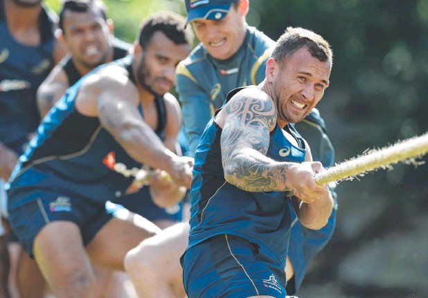 ?? Picture: AAP ?? PULLING THEIR WEIGHT: Quade Cooper (front) and Will Genia (second from left) during a tug of war at the Wallabies' final training session.