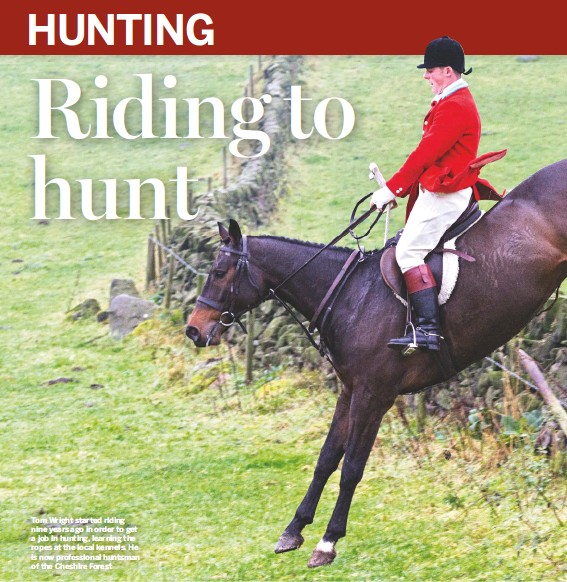 ??  ?? Tom Wright started riding nine years ago in order to get a job in hunting, learning the ropes at the local kennels. He is now professional huntsman of the Cheshire Forest