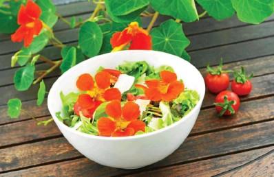 ?? Photos Adobe Stock ?? Une salade d'été qui met en appétit !