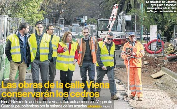 LAS OBRAS DE LA CALLE VIENA CONSERVARÁN LOS CEDROS