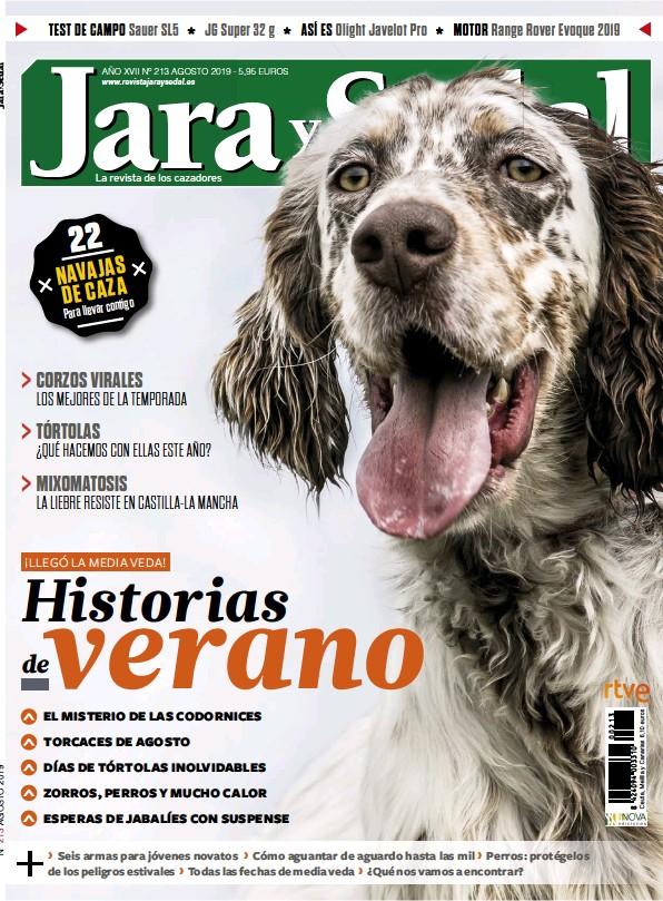 HISTORIAS VERANO DE