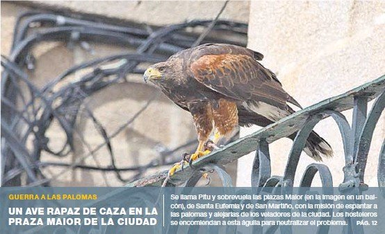 LA XUNTA REVISARÁ EL USO DEL PASAPORTE COVID TRAS EL AVAL DEL SUPREMO