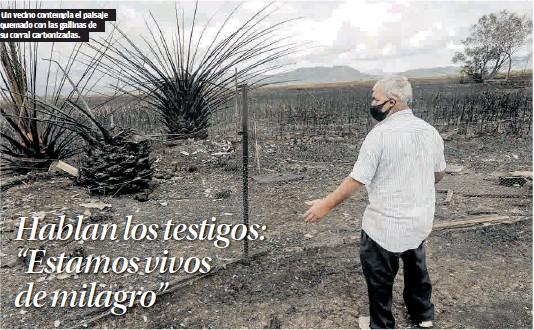 "HABLAN LOS TESTIGOS: ""ESTAMOS VIVOS DE MILAGRO"""