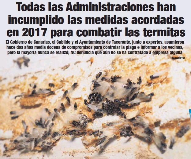 TODAS LAS ADMINISTRACIONES HAN INCUMPLIDO LAS MEDIDAS ACORDADAS EN 2017 PARA COMBATIR LAS TERMITAS