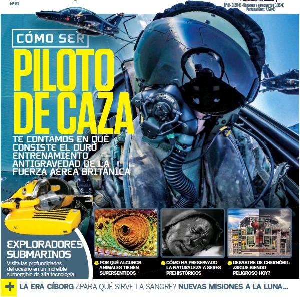 PILOTO DE CAZA