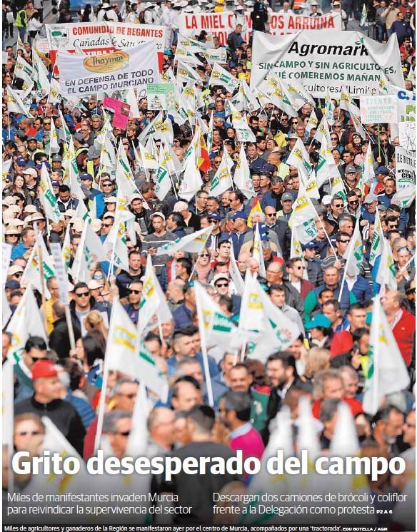 GRITO DESESPERADO DEL CAMPO
