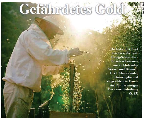 GEFÄHRDETES GOLD
