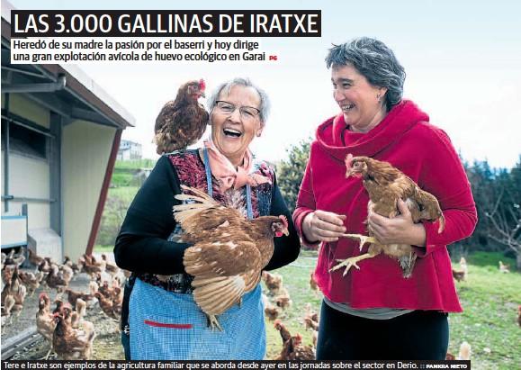 LAS 3.000 GALLINAS DE IRATXE