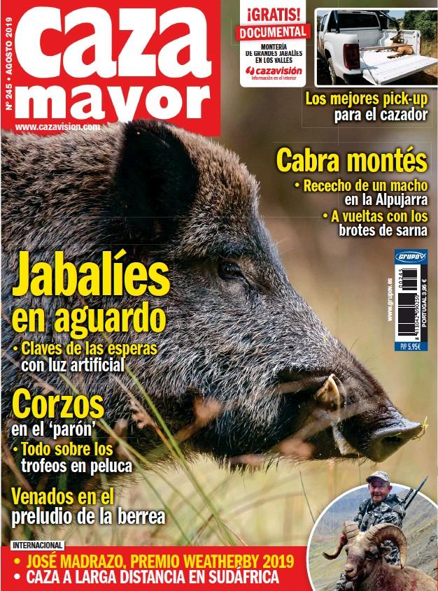 JABALÍES EN AGUARDO
