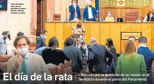 EL DÍA DE LA RATA