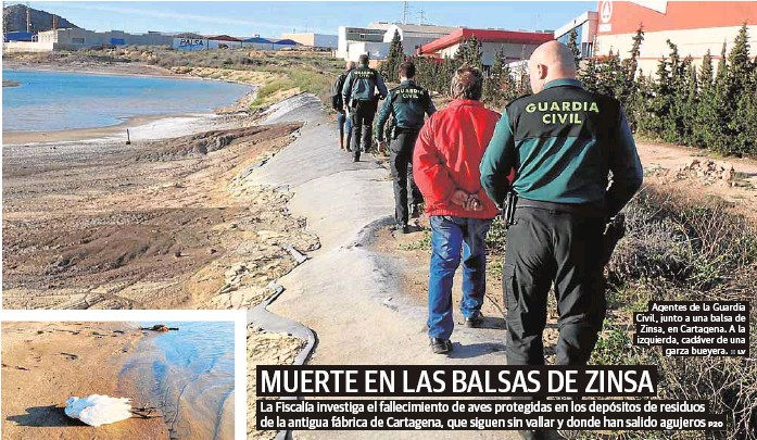 MUERTE EN LAS BALSAS DE ZINSA