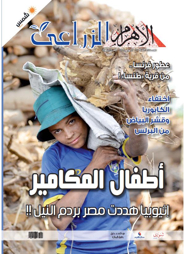 Read full digital edition of Alzeraaya newspaper from Egypt